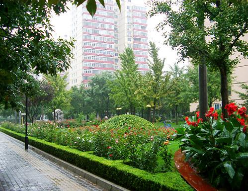 市区景观绿化