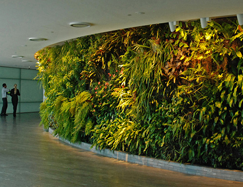 办公环境绿化